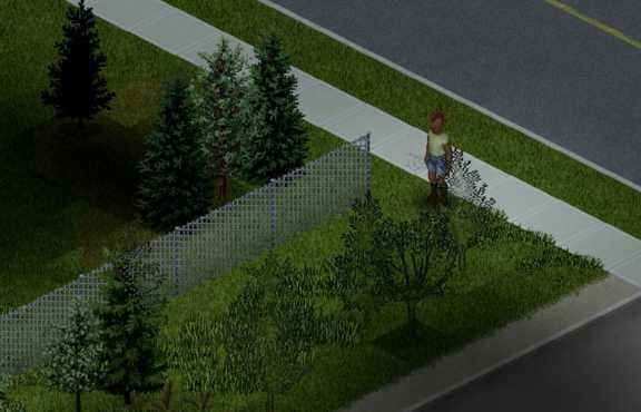 Игрок, стоящий рядом с небольшим проволочным забором в Project Zomboid