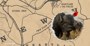 Локации Red Dead Online Bison