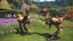 Final Fantasy 14: Как разблокировать средства передвижения
